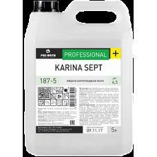 Pro-Brite: Карина Септ 5л бактерицидное мыло с экстрактами трав